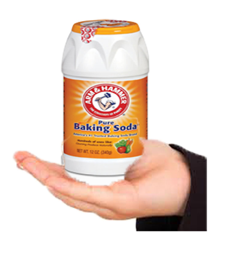 44 Reasons Why Does Baking Soda Kill Fleas How To Get Rid Of Flea